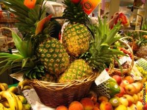 fruit-t5363
